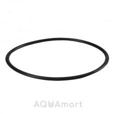 Уплотнительное кольцо AquaFilter OR-E-890X35