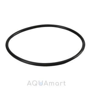 Уплотнительное кольцо Filter1